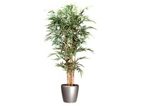 Artificial plant Bamboo for inside + round pot in anthracite grey
